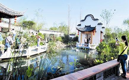 在楚水畔的祥鹤岛上,30只美丽的丹顶鹤被放飞.