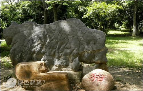 武汉有个生态主题公园以奇石为特色